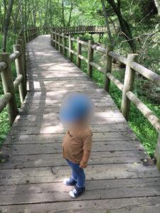 丸太橋 上高地 3歳 2歳